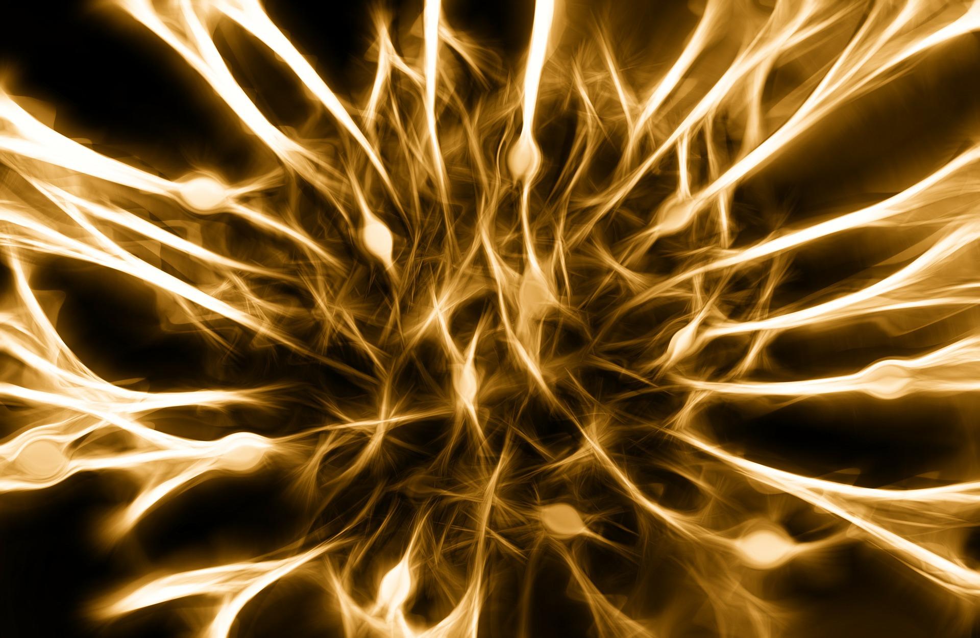 peripheres Nervensystem – diabetiker-infonetz.de